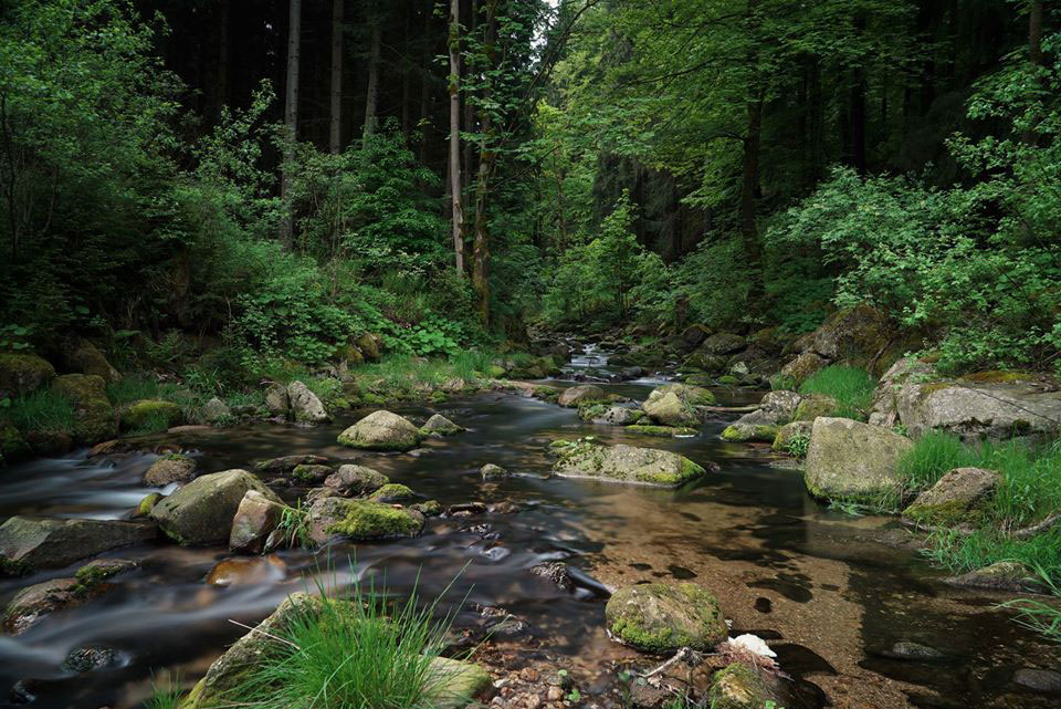 Ruhe kann man im Erzgebirge finden - wie hier an diesem Fluss.