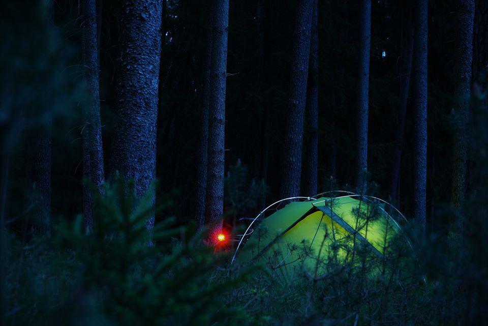 Ein einsames Zelt mitten im Wald - im Einklang mit der Natur.