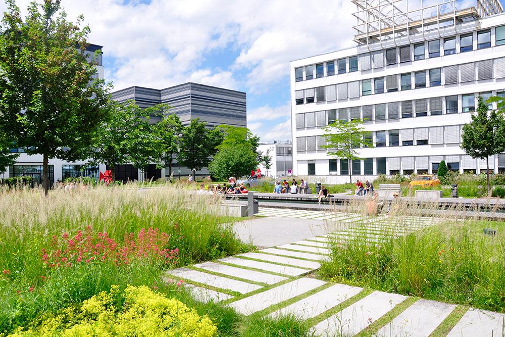 Das Grün an der Neuen Balan lädt zur Mittagspause im Freien ein