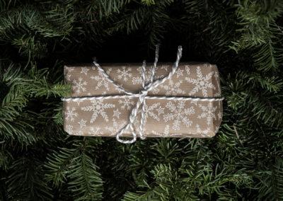 Weihnachtsgeschenk (Bild © Annie Spratt on Unsplash)